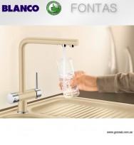 Blanco Fontas